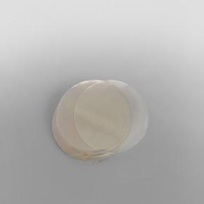 Burger Disc