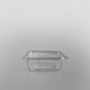 Crystal RPET Clear Hinged Container [250cc]