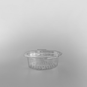 GPI Multipack Clear Hinged Container