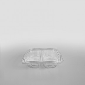 Somoplast 2 Compartment Clear Hinged Rectangular Container [250cc]
