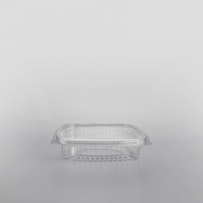 Somoplast Clear Hinged Rectangular Container