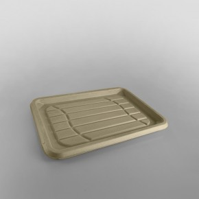 Sabert Rect. Pulp Platter