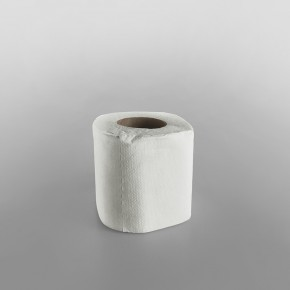 Toilet Paper Roll 2ply [200 Sheets][105x95mm]