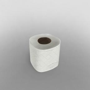Whisper Toilet Paper Roll 2ply [104 x 122mm] [24m Per Roll]